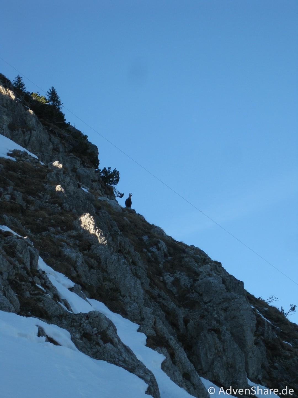 06_Krinnenspitze (Large)